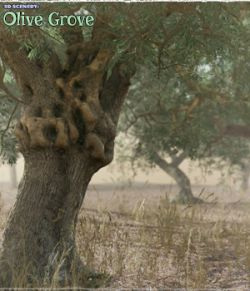 3D Scenery: Olive Grove