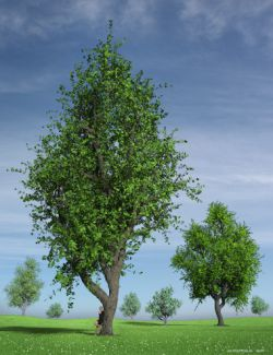 Hybrid Trees Collection
