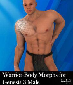 Warrior Body Morphs for Genesis 3 Male