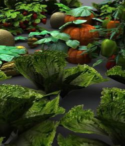 Vegetable Plants 2 - Extended License