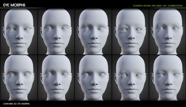 200 Plus Head and Face Morphs for Genesis 8 Female(s)