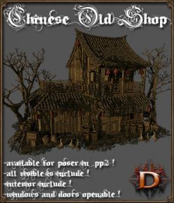 Chinese Old Shop