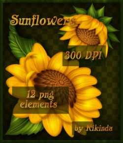 Sunflowers Elements