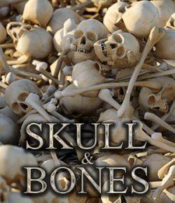 Flinks Skull & Bones
