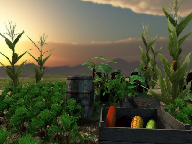 Vegetable Plants - Extended License