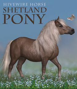 HiveWire Shetland Pony