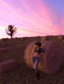 Harvest Hay Bales