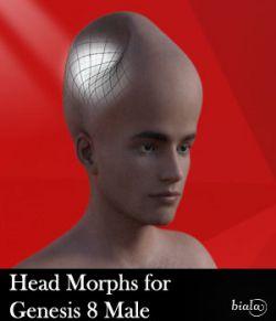 Head Morphs For Genesis 8 Male
