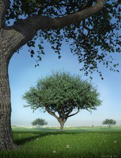 Hybrid Trees - Pruned