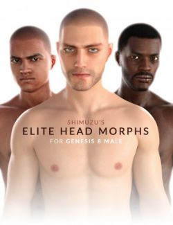 Shimuzu's Elite Head Morphs for Genesis 8 Male