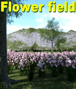 Flower field DAZ