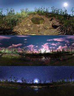 Amphibian Pond