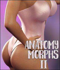 Li Anatomy Morphs II For Genesis 8 Female