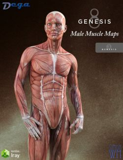 Muscle Maps for Genesis 3 and 8 Male