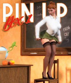 Pin Up Box 01 for DS