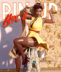 Pin Up Box 05 for DS