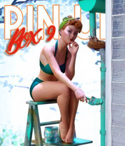 Pin Up Box 09 for DS