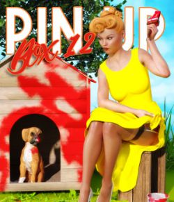 Pin Up Box 12 for DS