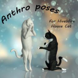 Anthro Poses for the Hivewire House Cat