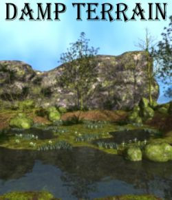 Damp terrain Poser