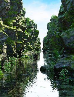 Nature Ravine
