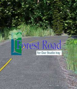 Forest Road for Daz Iray
