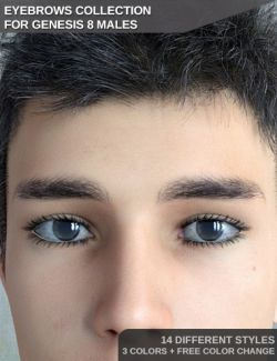 Eyebrows Collection for Genesis 8 Male(s)