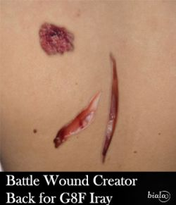 Battle Wound Creator Back Torso Iray Version for G8F