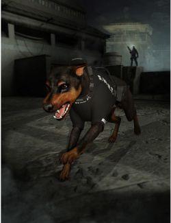 Daz Dog 8 Service Vest