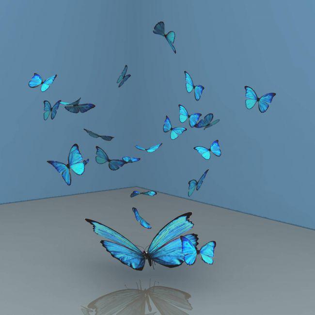 A Flutter Of Blue Butterflies For Vue