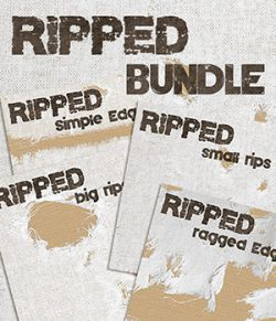 Ripped- Bundle
