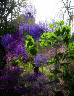 Architectural Garden Plants for Daz Studio Vol. 1