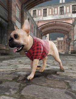 Daz Dog 8 Service Vest Everyday Sweaters