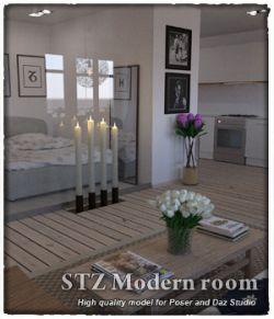 STZ Modern room