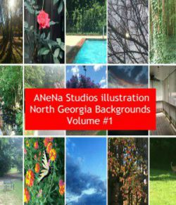 ANena Studios illustration North Georgia Background Volume #1