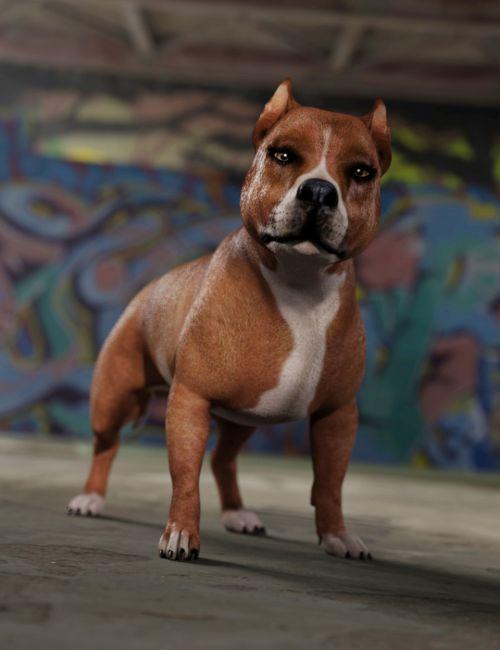 Bully for Daz Dog 8