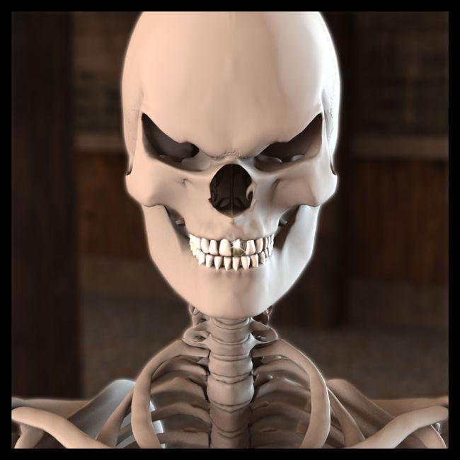 Skeleton for Genesis 8 Male
