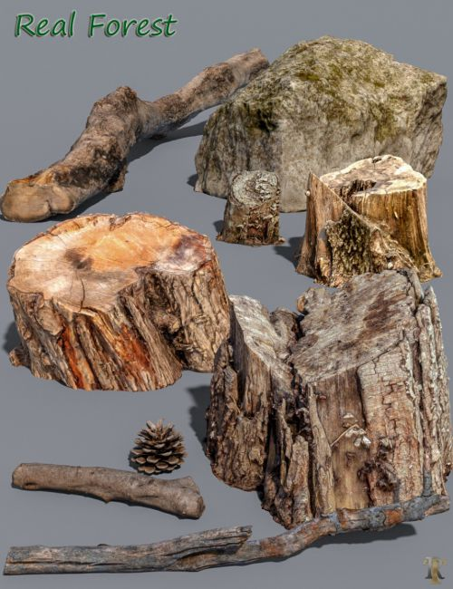 Real Forest Assets and FBX