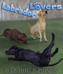 LABRADOR Lovers Poses for Labrador Breed