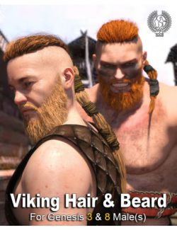 Viking Hair and Beard for Genesis 3 and 8 Male(s)