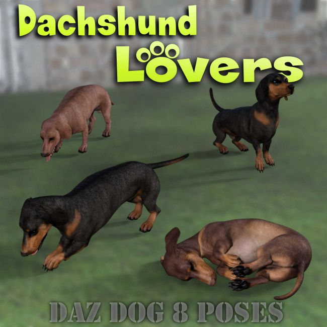 DACHSHUND Lovers Poses for Dachshund Breed (Daz Dog 8)