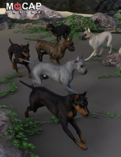 Dog 8 Animation Cycles - Base and Great Dane