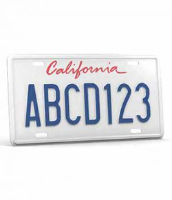 CAR LICENSE PLATE- Extended License