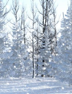 Winter Pine Forest Prop Set