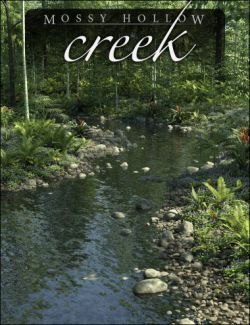 Mossy Hollow Creek