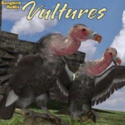 SBRM Vultures