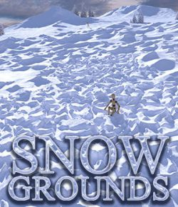 Flinks Snow Grounds