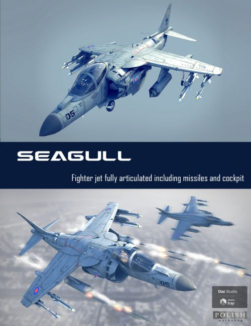 Seagull Fighter Jet