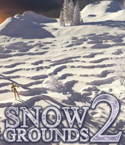 Flinks Snow Grounds 2