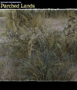 Plant Foundations: Parched Lands